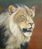 lion of the limpopo by emmawood
