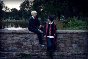 Draco Malfoy and Harry Potter by CruxisCosplay