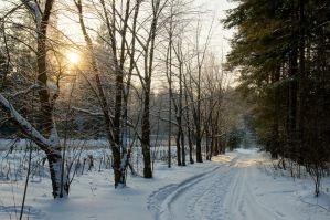 Snow Path by Sulde