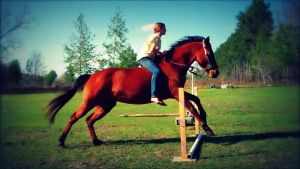 Jumping bareback by LazyHcustomtack
