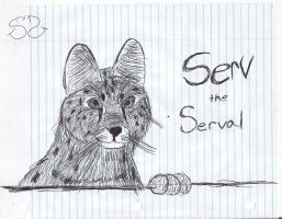 Serv the Serval by Zs99
