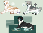 More dog adopts! by Jessadopts