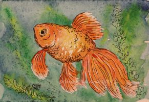 Watercolor and Ink #10 - Goldfish by Oksana007
