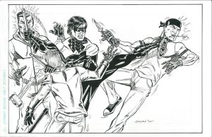 NIGHTWING FIGHTING by FanBoy67