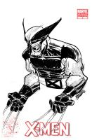 X-MEN COVER - WOLVERINE by EricCanete