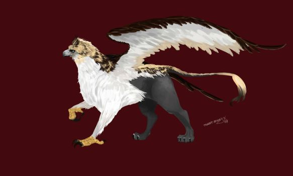 Philippine Eagle Griffin Concept by ThunderReign
