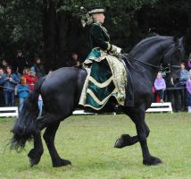 Green Lady On Friesian 04 by ponystock