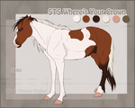 STS Stallion- Duke by ShockTherapyStables