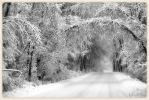 Winters Passage by DethEternl