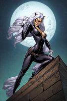 Black Cat by spidermanfan2099