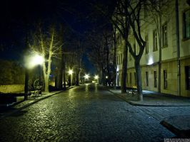 Empty Street by 5haman0id