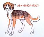 New Design and ID by Ask-Ginga-Italy