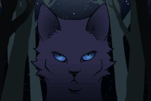 BLUESTAR ANIMATION WHAT?? by kuiwi