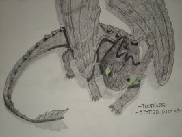 -toothless-spotted hiccup- by Royal-Dragon