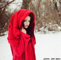 Red Riding Hood 11 by ivoturk