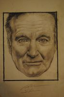 Robin Williams by Plishman