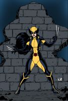 All-New Wolverine by Antonio Agustinho by edCOM02