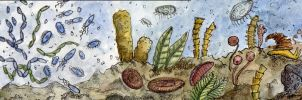 History of Life - Origin to Early Cambrian by StarvingScientist
