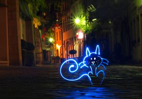 Cat in Freiburg by orestART