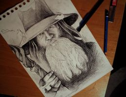 Gandalf by Rheatheranger