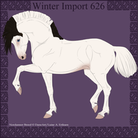 Winter Import 626 by ThatDenver