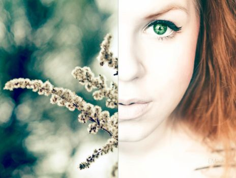 Green and Orange by Emily-Wendy