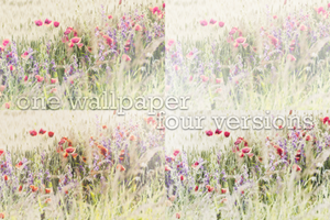 Flowers. by dAiheart