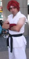 Classic Ryu Cosplay 4 by IronCobraAM