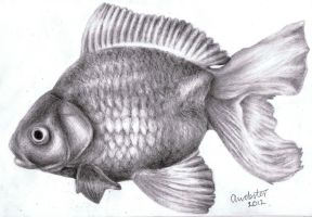 Realistic Fish by annoKat