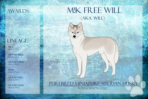 RBIS M!K Free Will Ref Sheet by xMush-Kennelsx