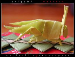 Montroll's grasshopper by orsobrusco