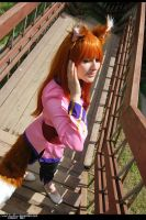 Spice and Wolf - Horo 13 by namstar91