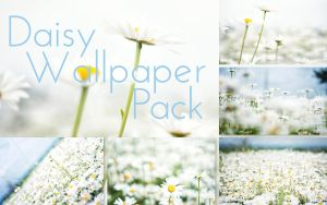 Daisy Wallpaper Pack by solefield
