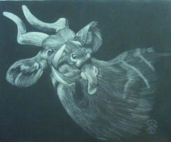 Drawing II ScratchBoard2 Bongo by Ishaway