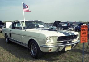 1966 GT 350 by focallength