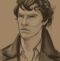 Sherlock by LauraTolton