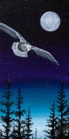 Night Owl by Temporalvisions