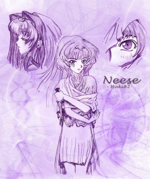 Neese Lodoss War 1 by MaddMorgana