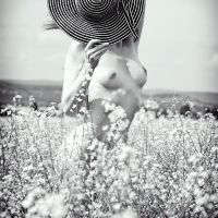 flowers and hat 2 by Boas73
