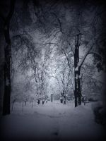 passage accros winter by danamis