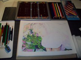 Once upon a dream WIP by Katerina-Art