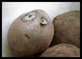 How does potato feel... by Mrichston