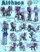 Althaea Complete Reference Sheet by frostykat13