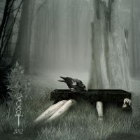 The search by vampirekingdom