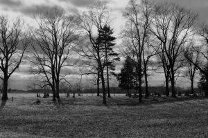 Country Cemetery by Adeimantus