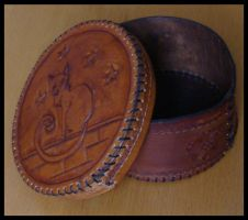 Cat Leather Box 2 by Bear-Crafter