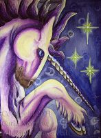 Unicorn by acrylicdragon