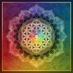 Rainbow Flower of Life Lotus by Lilyas