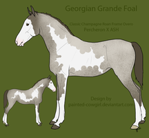 SOLD - Georgian Grande Foal 3 by painted-cowgirl