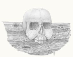 Skull by RyanNore